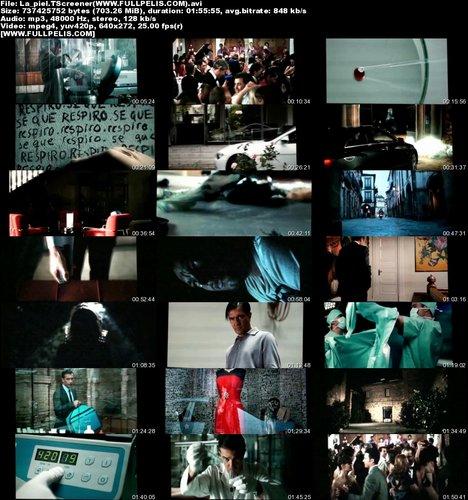 7ny0amobasrc t La piel que habito (2011)  Español